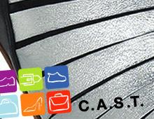 C.A.S.T. 2010