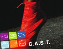 C.A.S.T. 2011